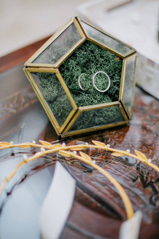 wedding rings terrarium