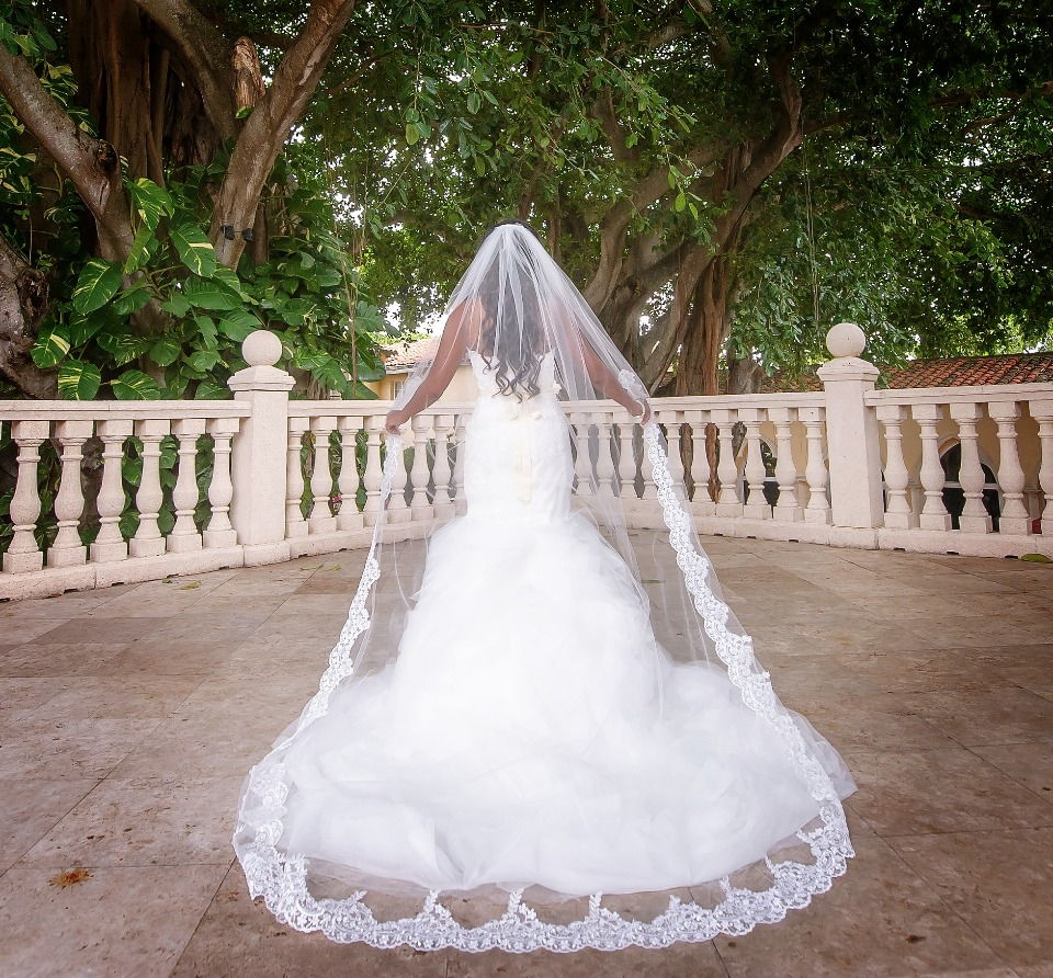 Gorgeous veils for under $100 from Blanca Veils