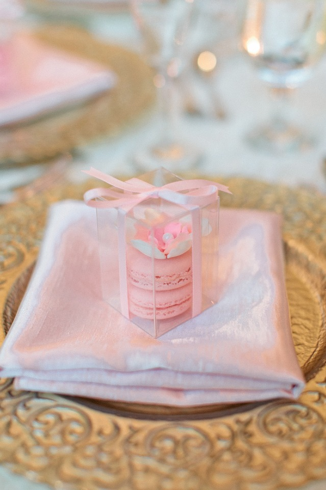 Blush Macarons favor for guests