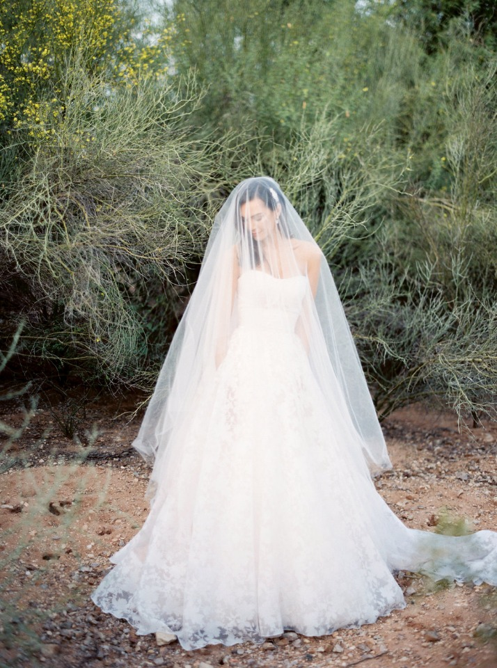 elegant Jim Hjelm wedding gown and veil