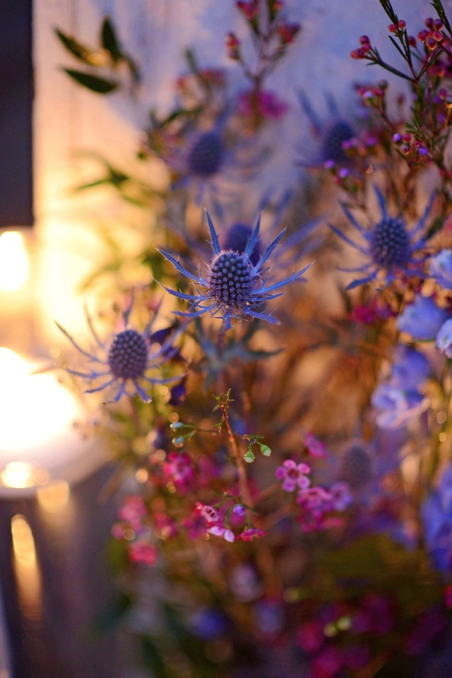 thistle and wax flower floral decor
