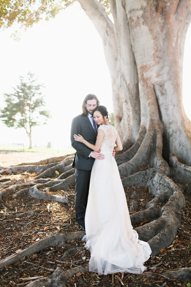 love under a giant tree