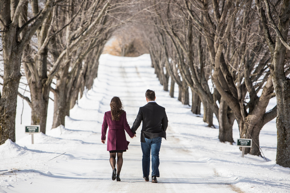 winter tree tunnel engagement session