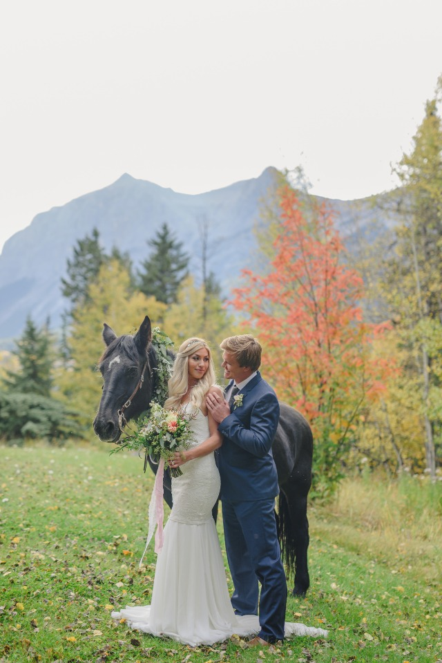 bride groom and a black wedding horse