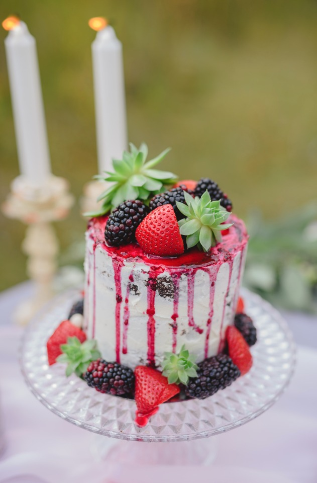 mini cake topped with berries and mini succulents