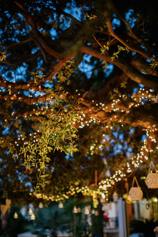 twinkle lights for your wedding reception
