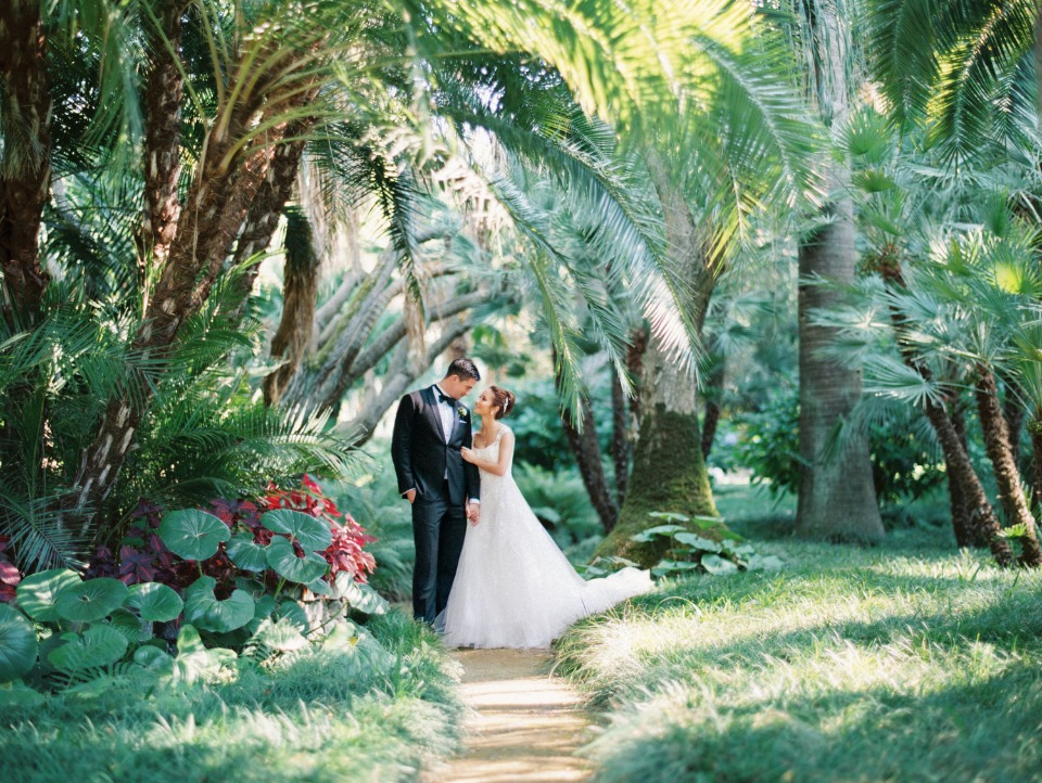 bride and groom in a jungle of love