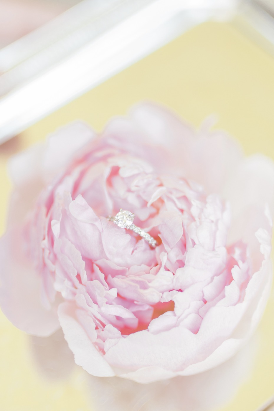 pink peony in a diamond ring