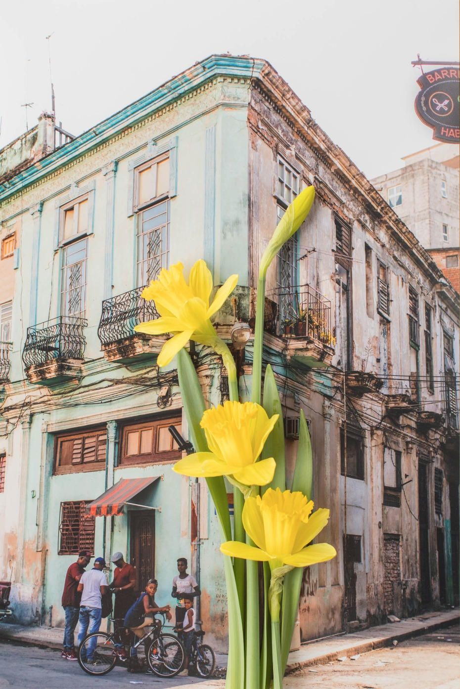 The beauty of Old Havana with fresh blooms