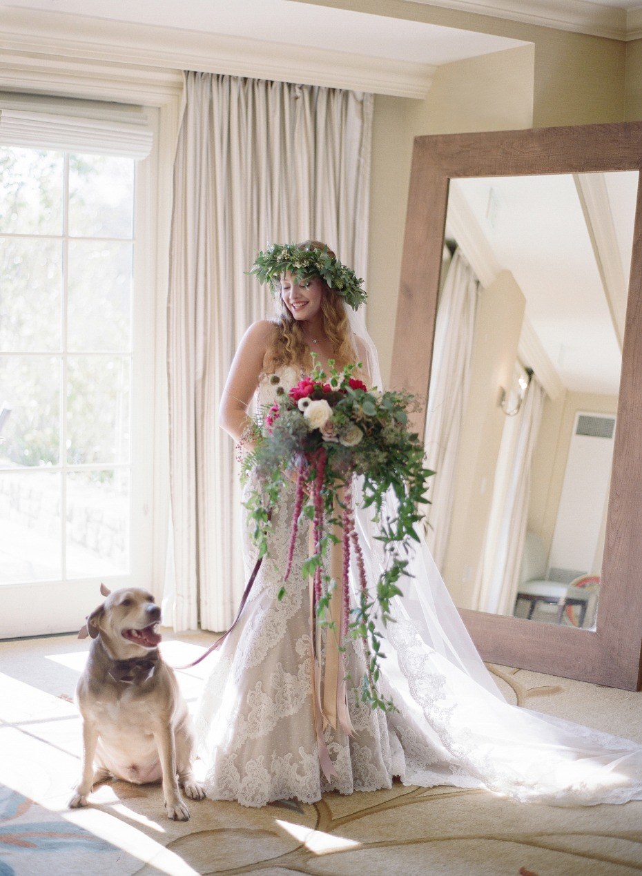 cute wedding dog