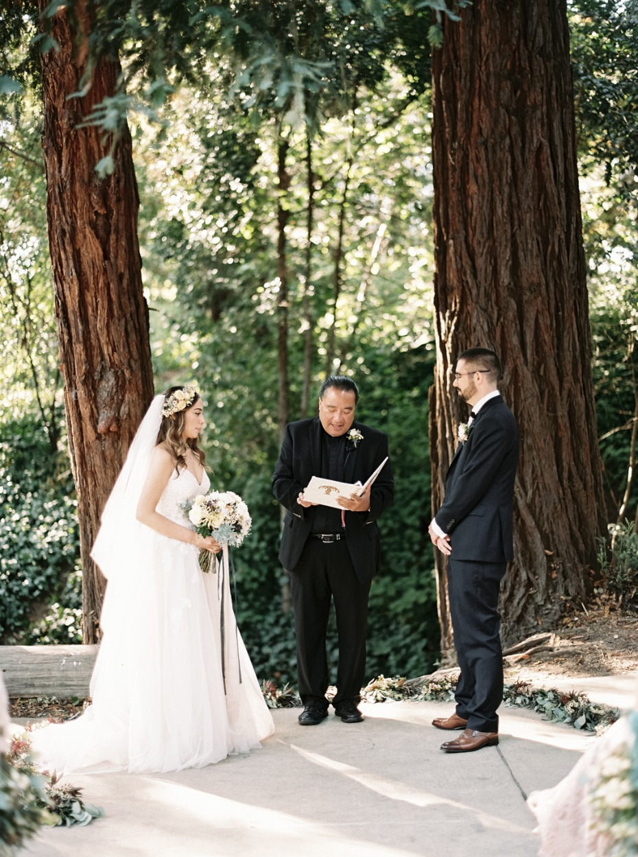 Ceremony amongst the redwoods
