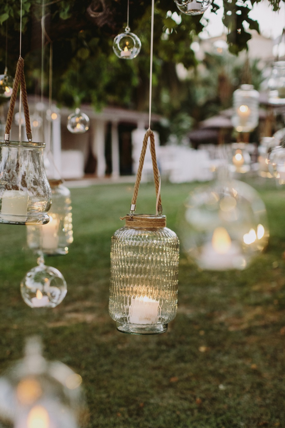 glowing and hanging lanterns in a tree