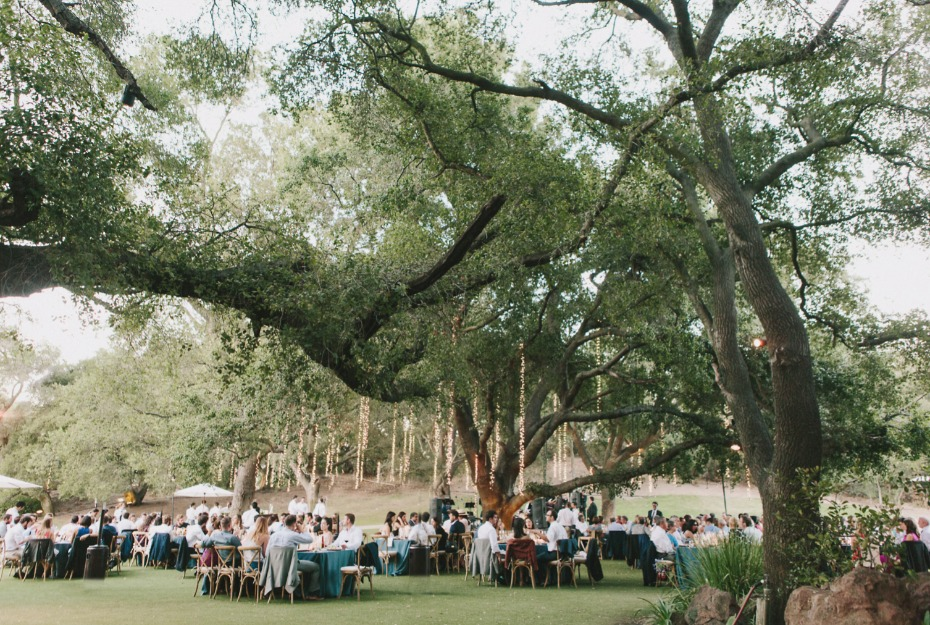 elegant outdoor wedding reception