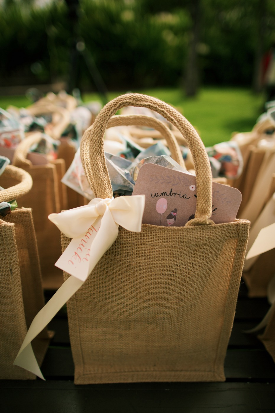 Favors bags for guests