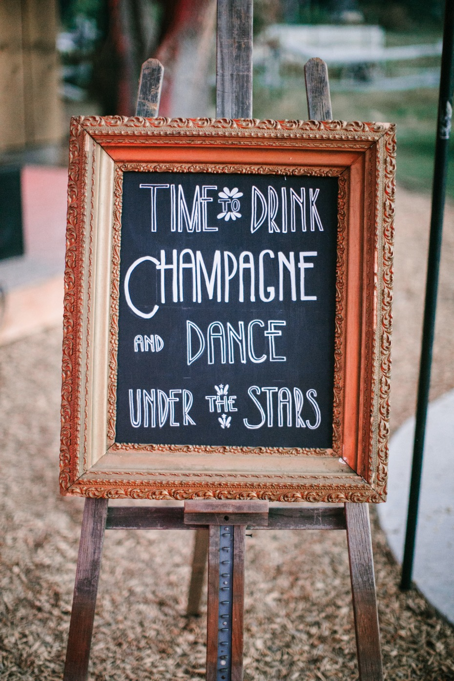 drink champagne wedding sign