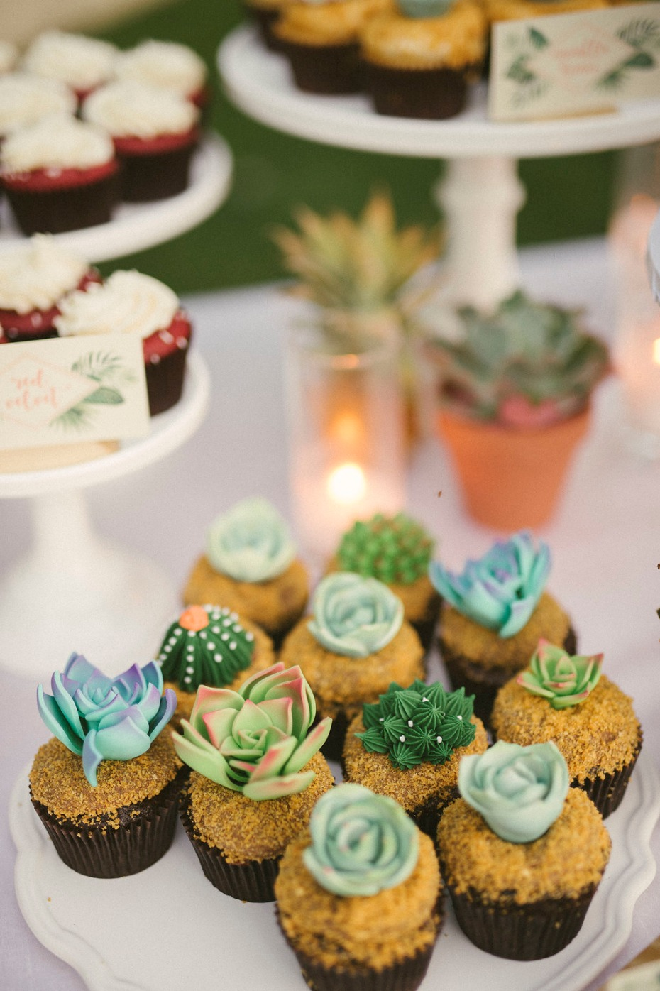 Succulent and cacti cupcakes <3