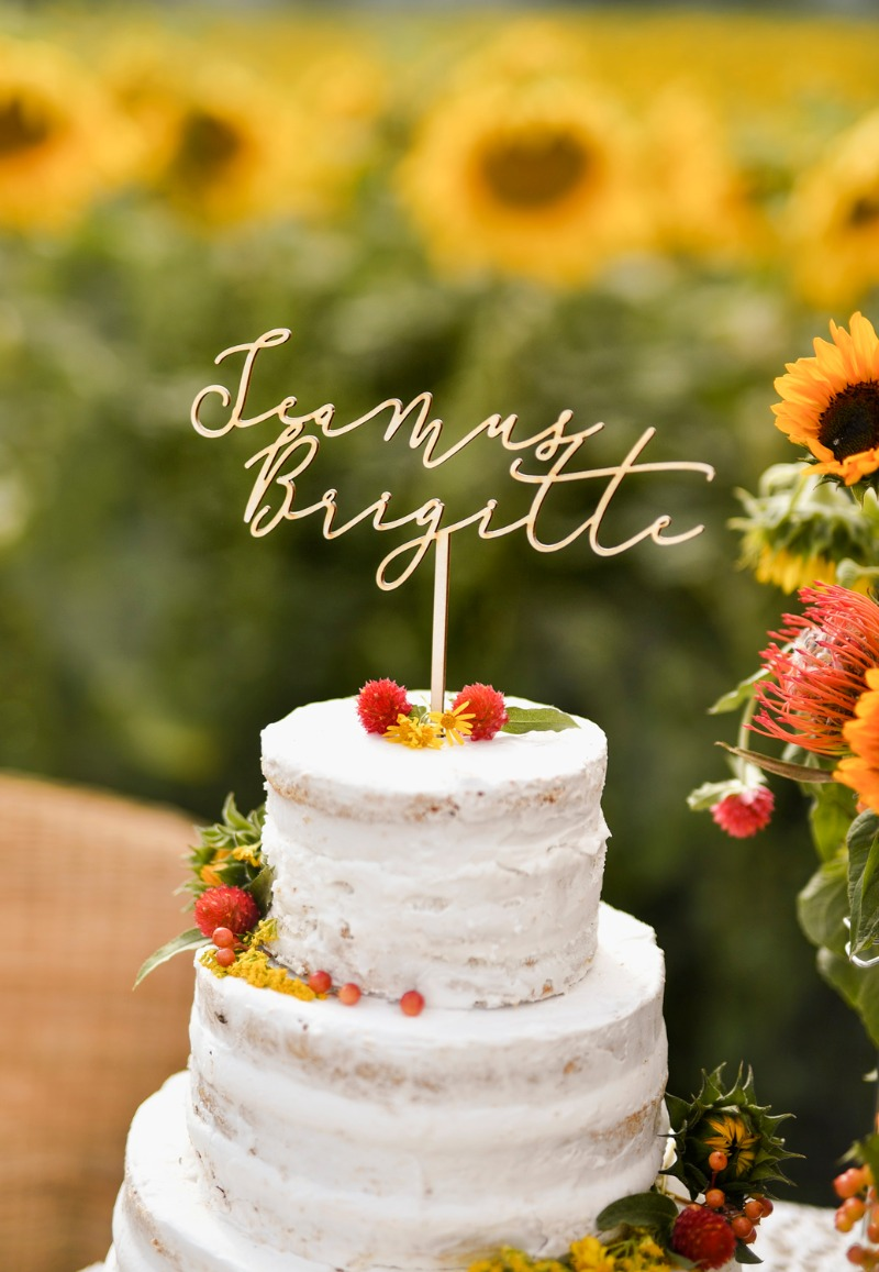 cake topper - rustic style