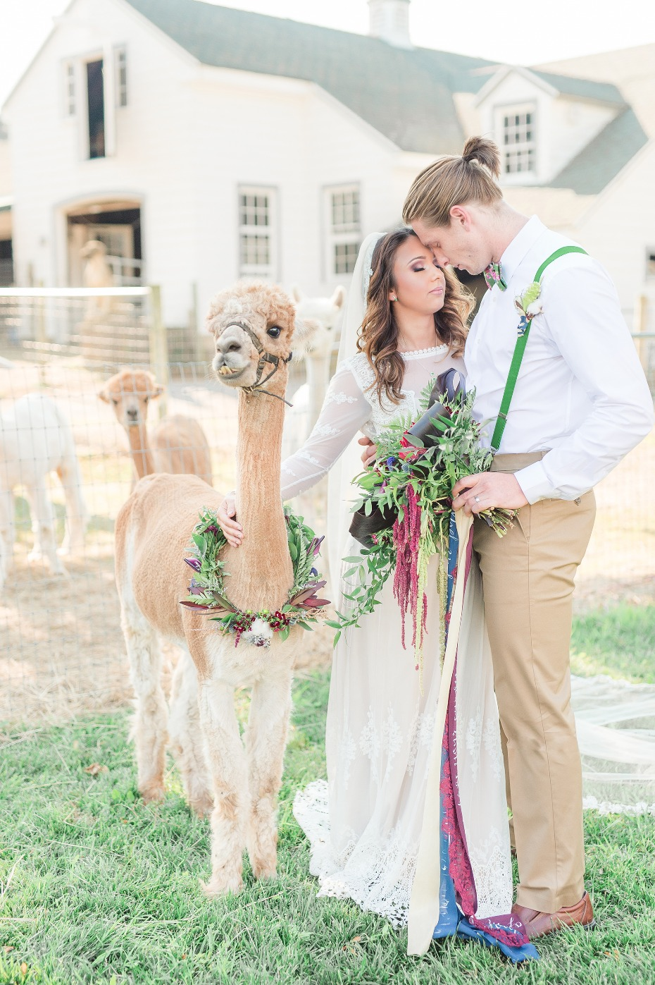 Alpaca farm wedding ideas we love!