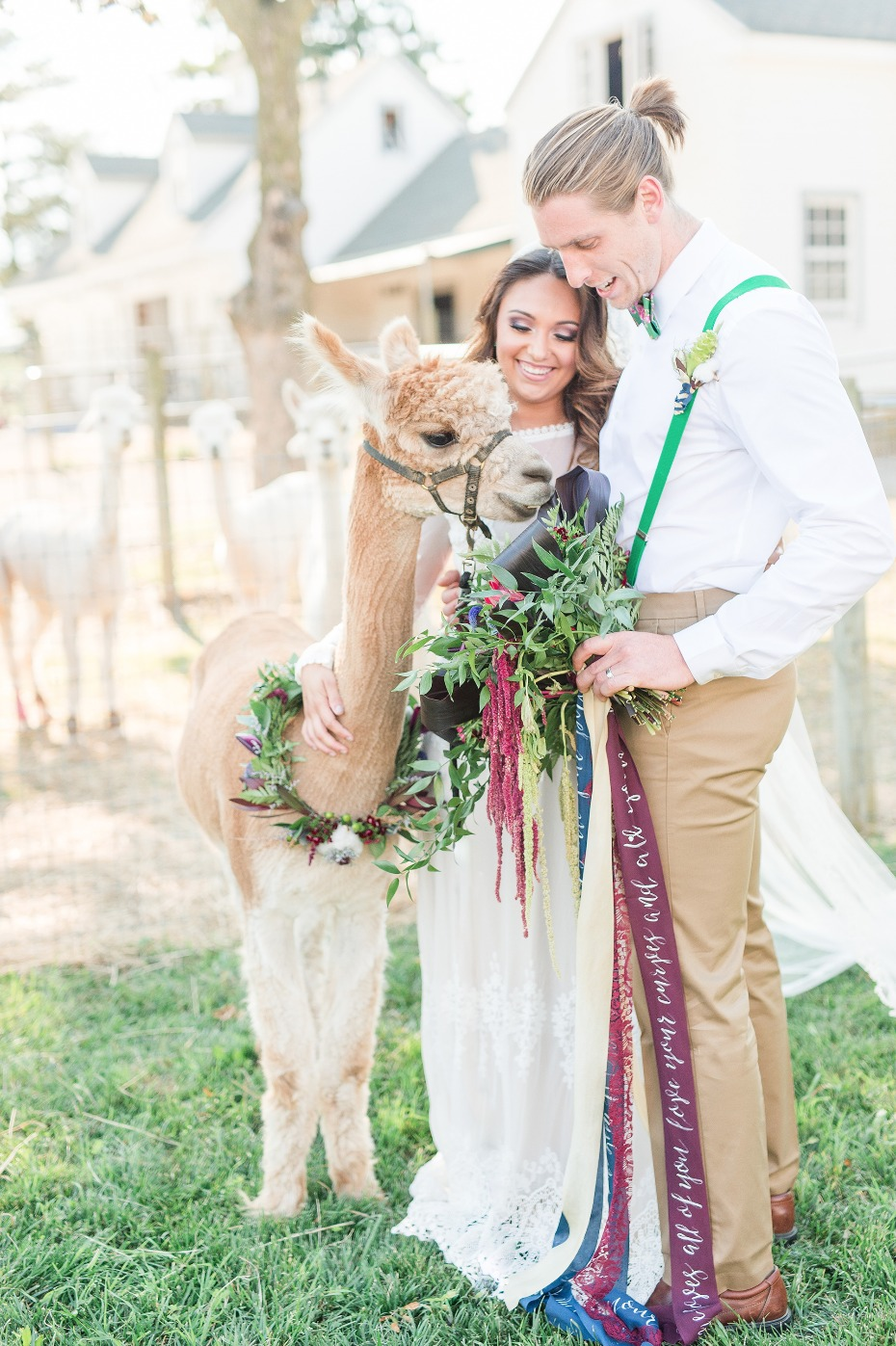 Alpaca hungry...bouquet snack?