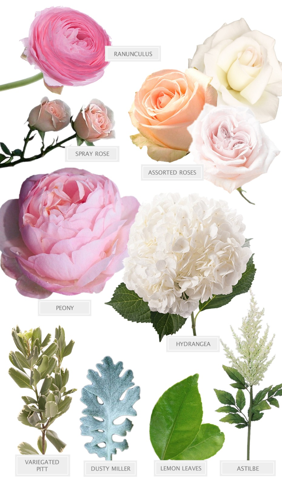 A Pink and White bouquet recipe