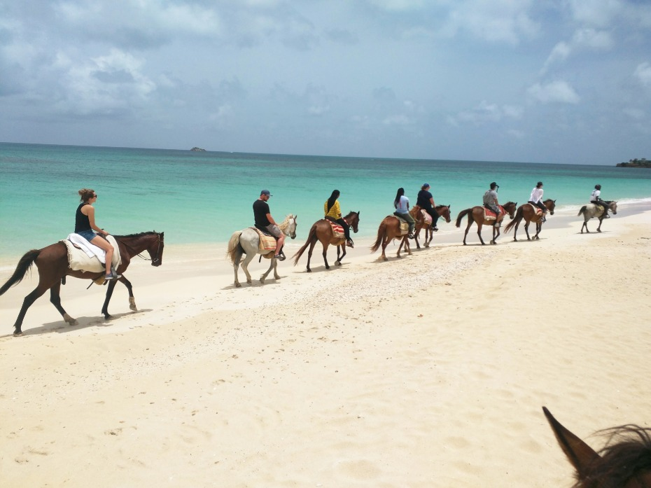Horseback riding on the beach in Antigua
