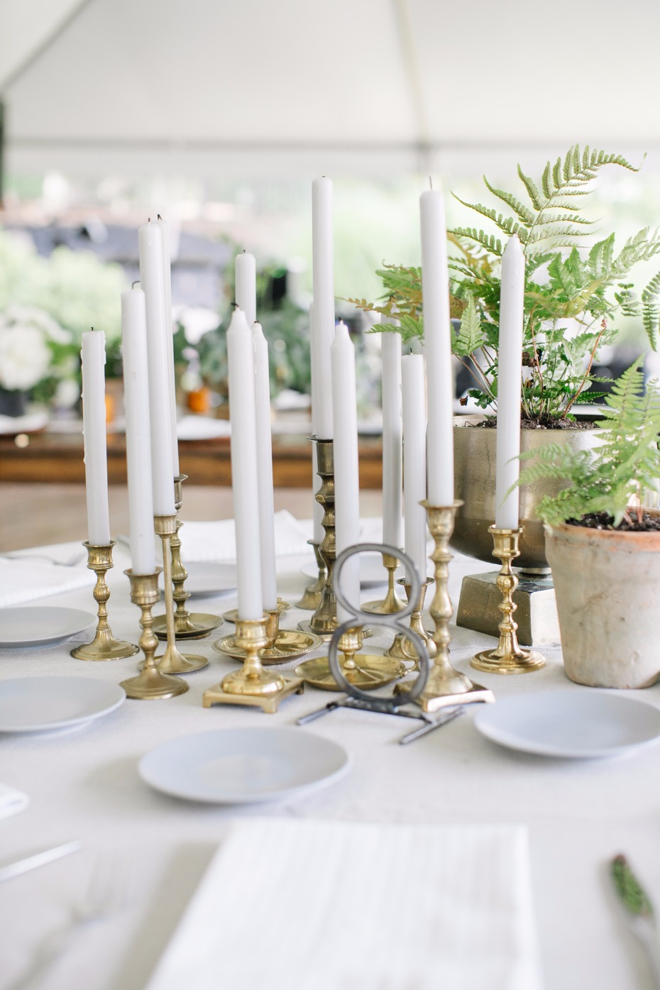 Candle sticks and potted plants centerpiece