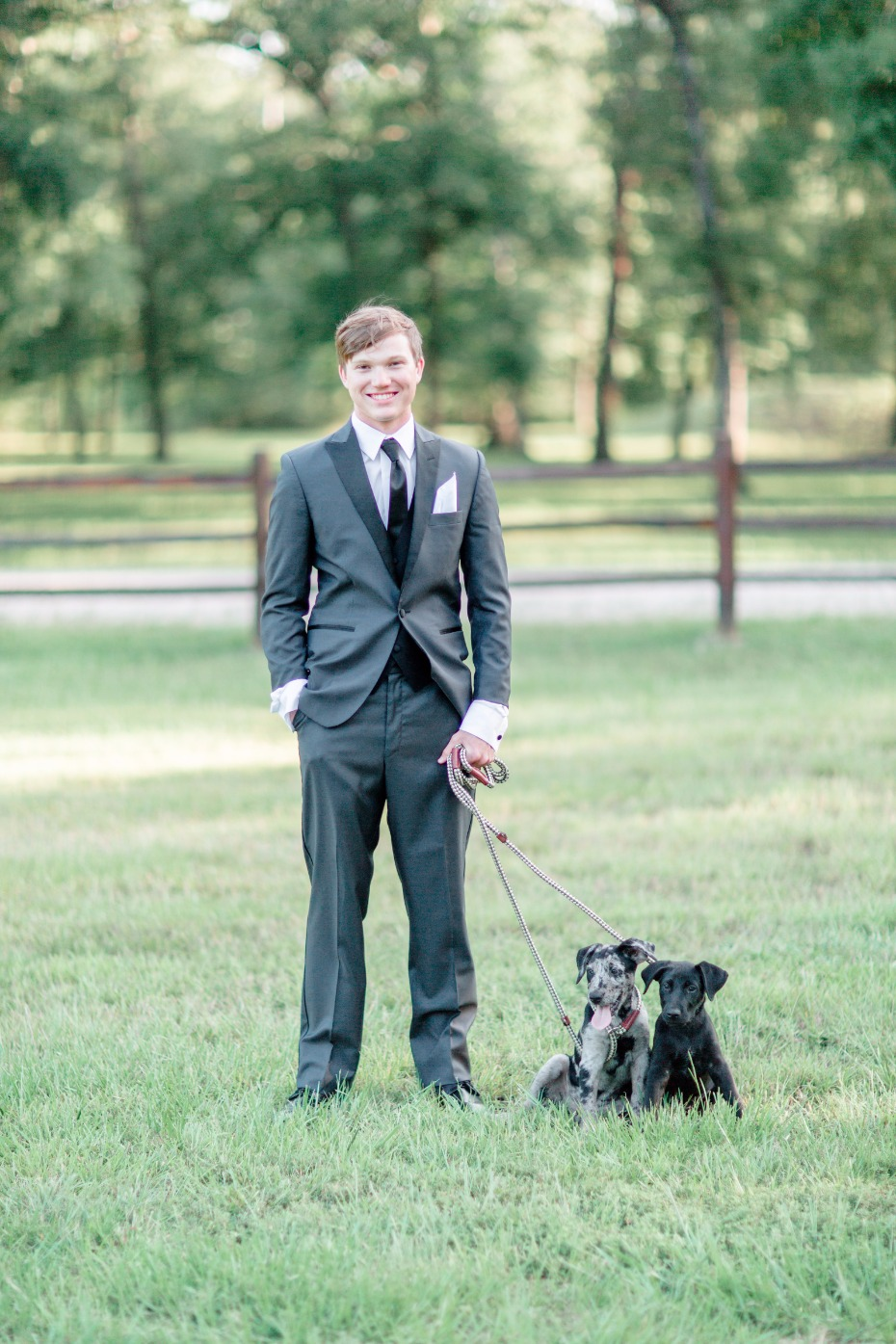 who's cuter this groom in his three piece suit or these adorable puppies