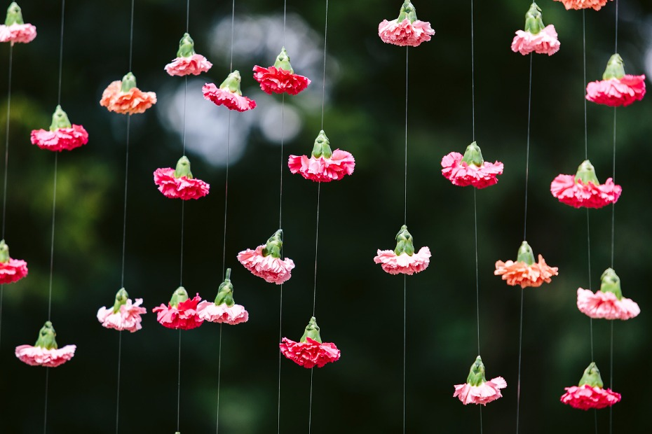 Hanging carnations backdrop