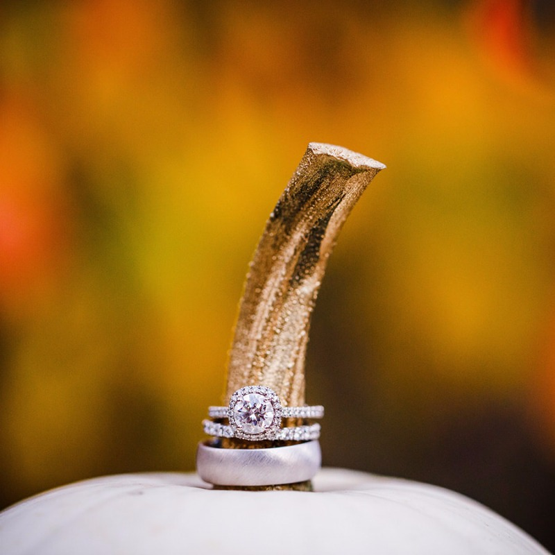 Perfect fall photoshoot to show off your beautiful rings! Sweetly Paired Instagram @sweetlypaired