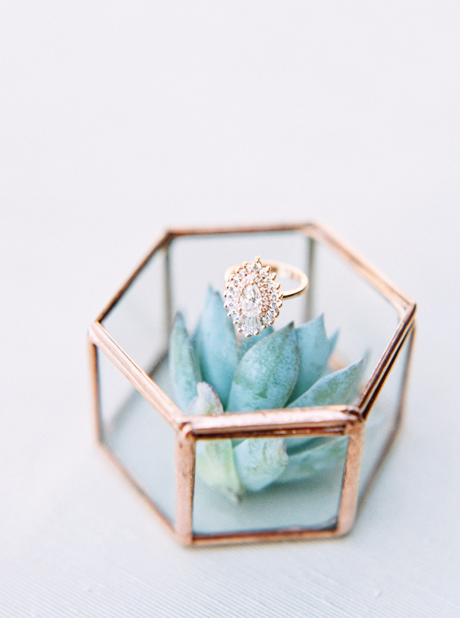 succulent wedding ring box