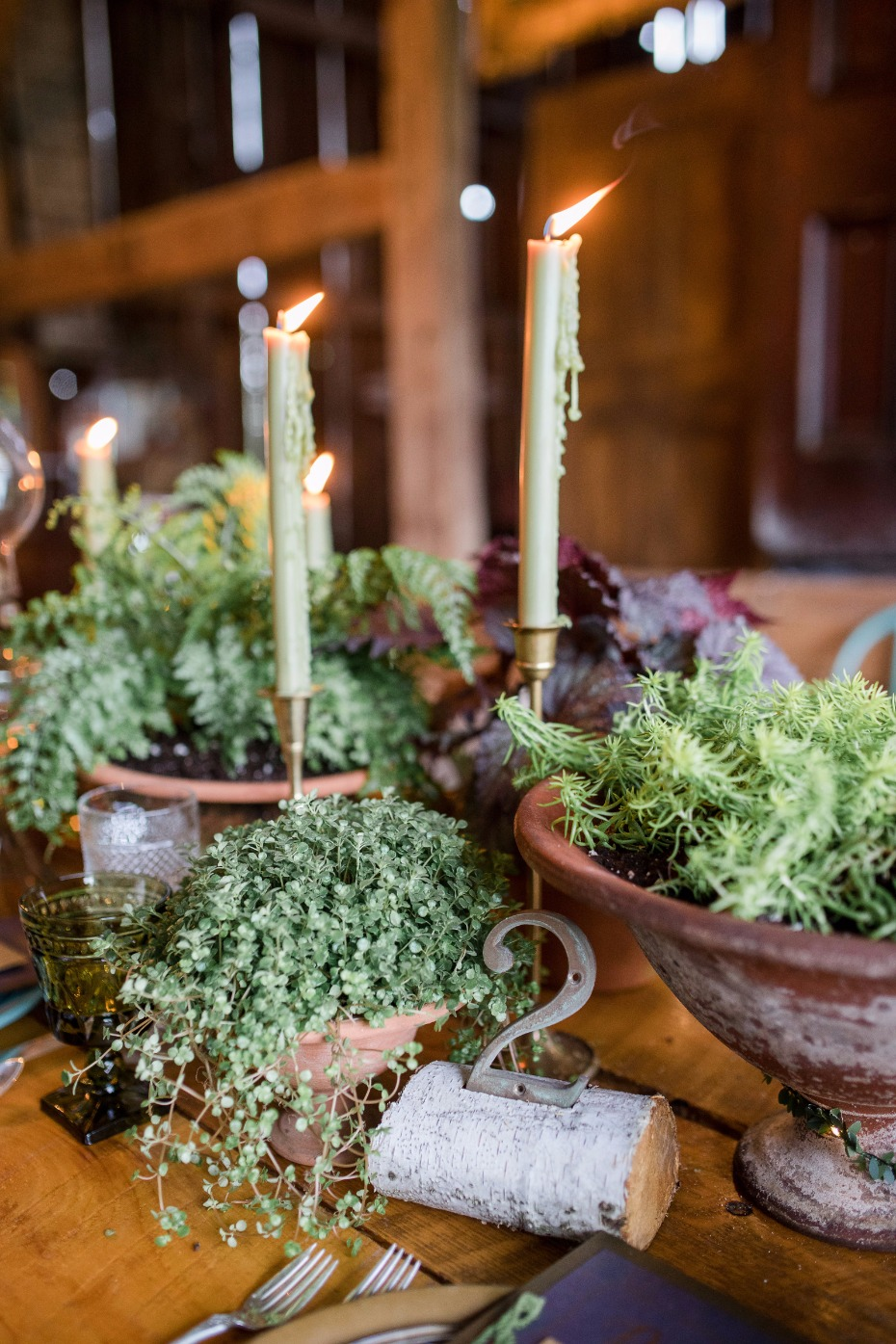 living wedding centerpieces for your organic rustic chic wedding table