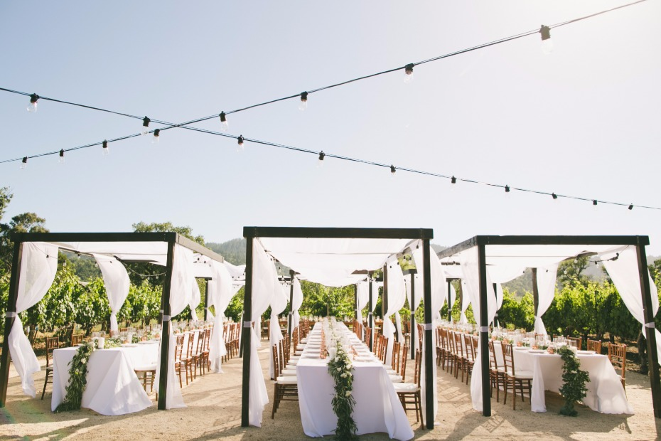 Airy reception at a vineyard
