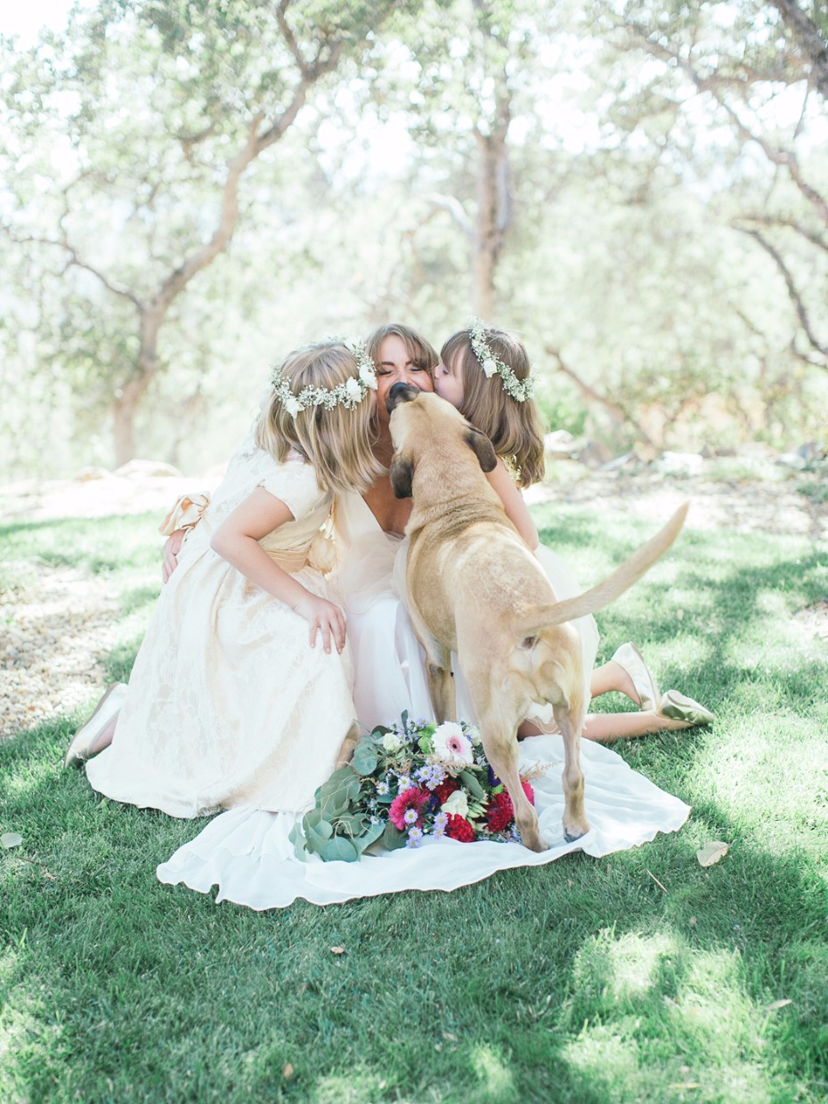puppy kiss for the beautiful bride