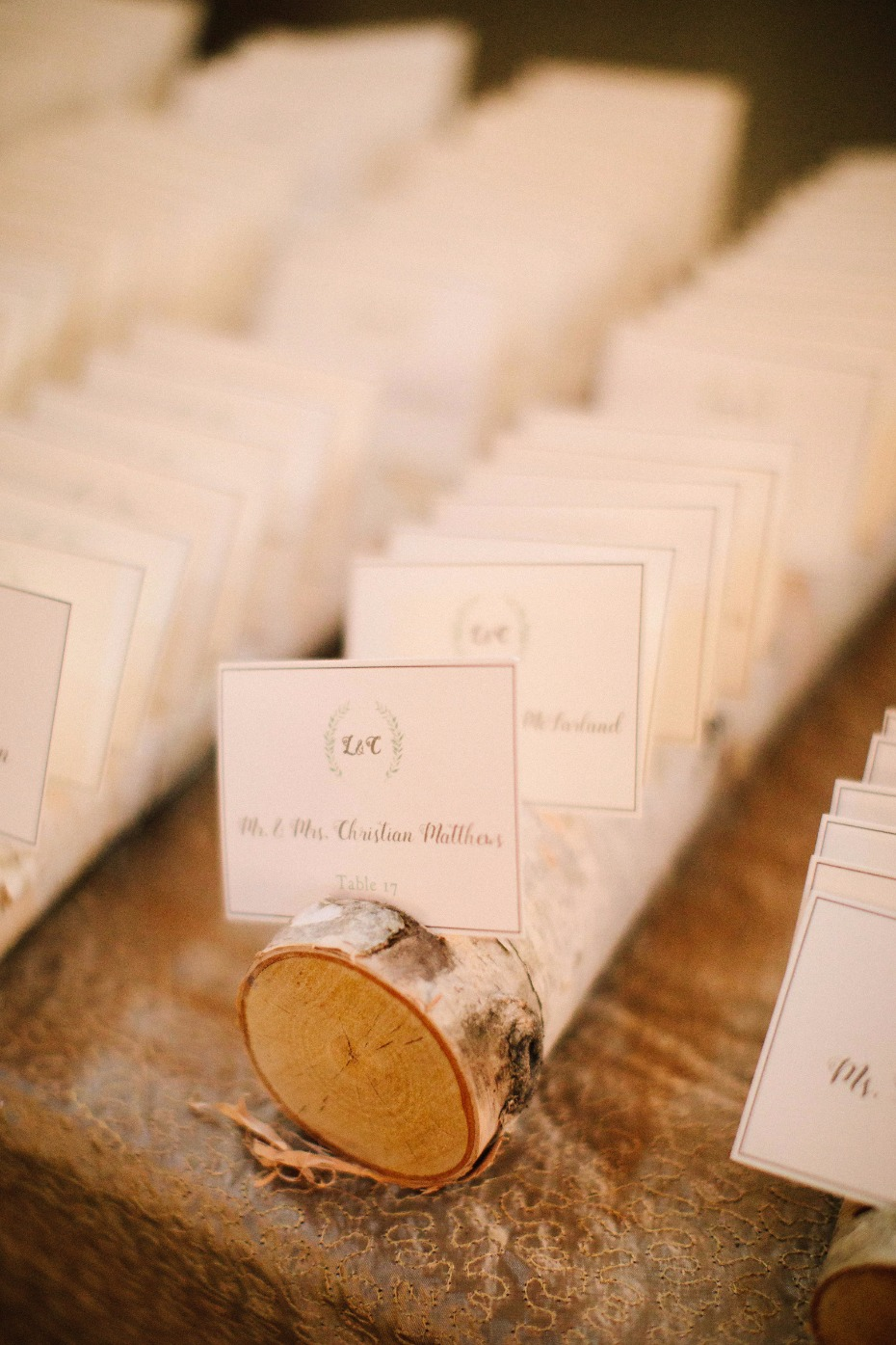 rustic and chic birch log escort card display