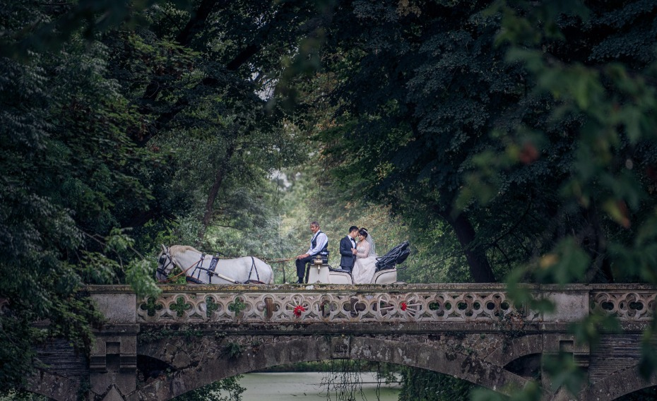 horse drawn carriage ride for your fairy tale wedding