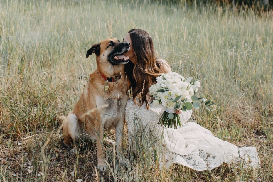bride and her wedding dog