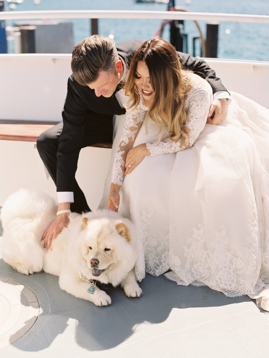 The bride and grooms pup