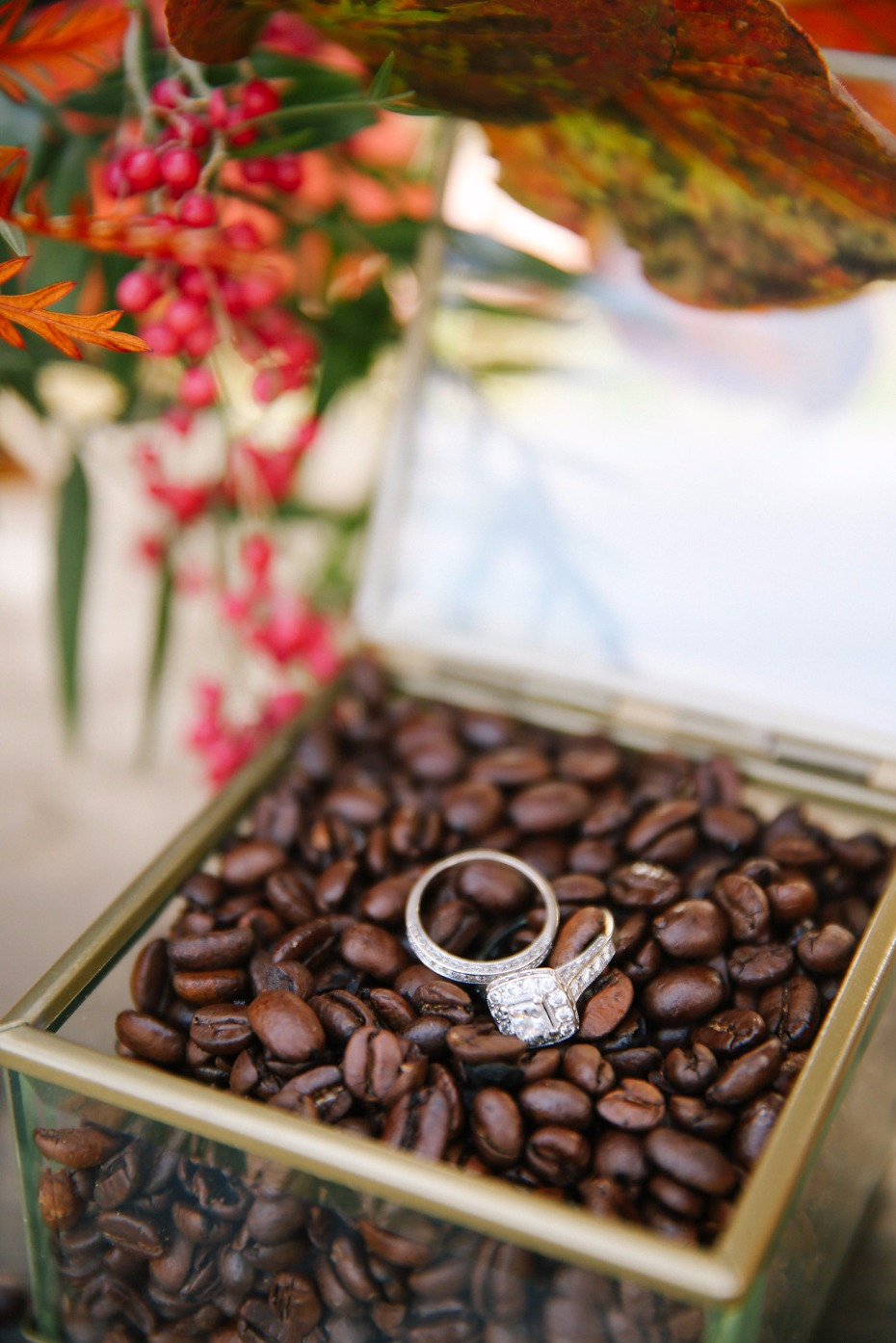 wedding rings in coffee beans