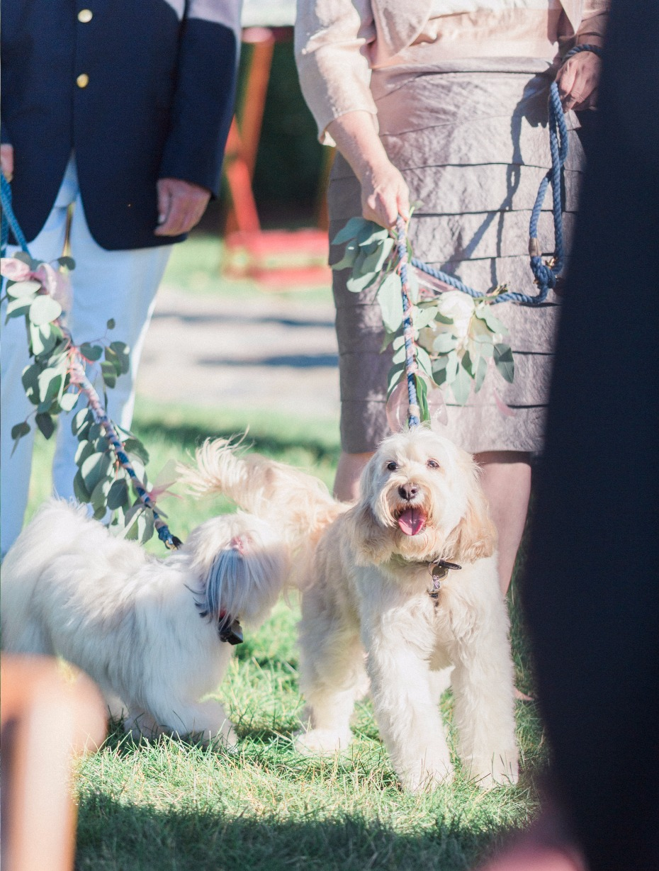 here come the ring bearer and flower girl