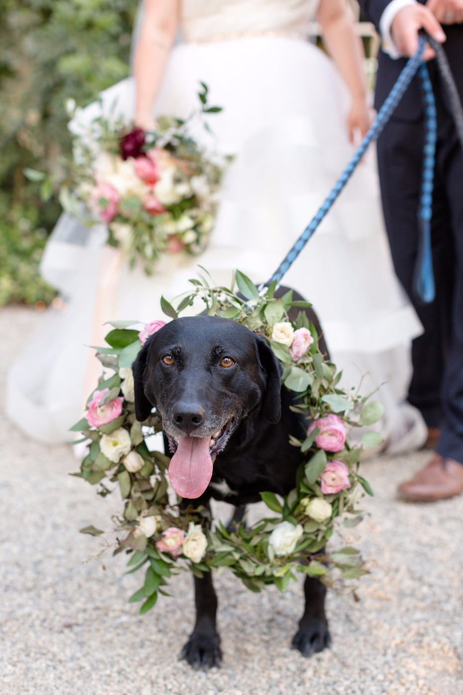 Wedding pup with wreath