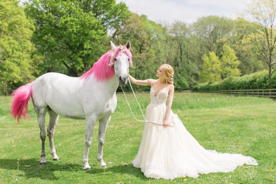 Horse unicorn with a pink mane