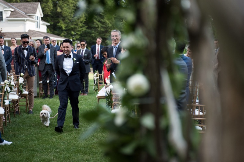 At this wedding, the two grooms were escorted down the aisle by their dogs!
