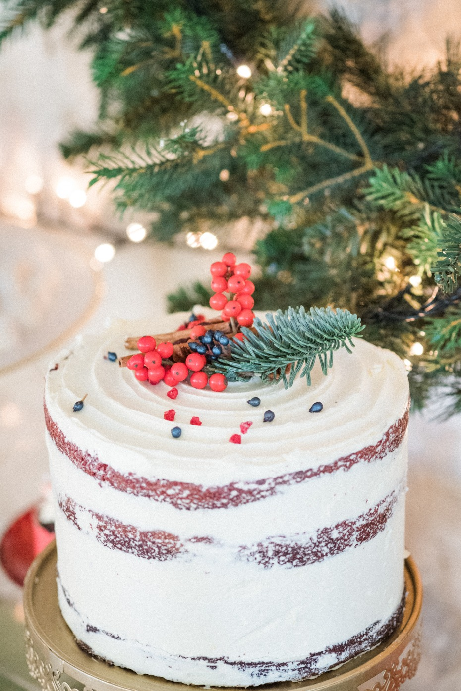 Naked wintery cake for Christmas