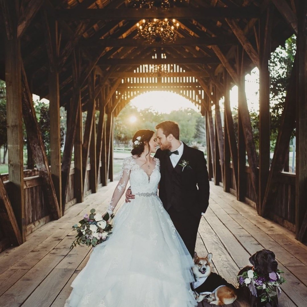 Profile Image from Big Sky Barn