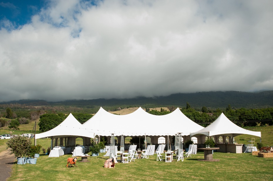 Tent reception in Maui