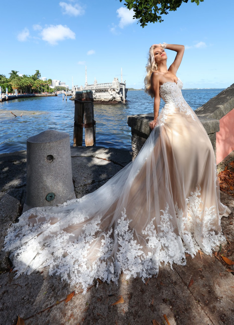 Ashley & Justin bridal gown at Terry Costa