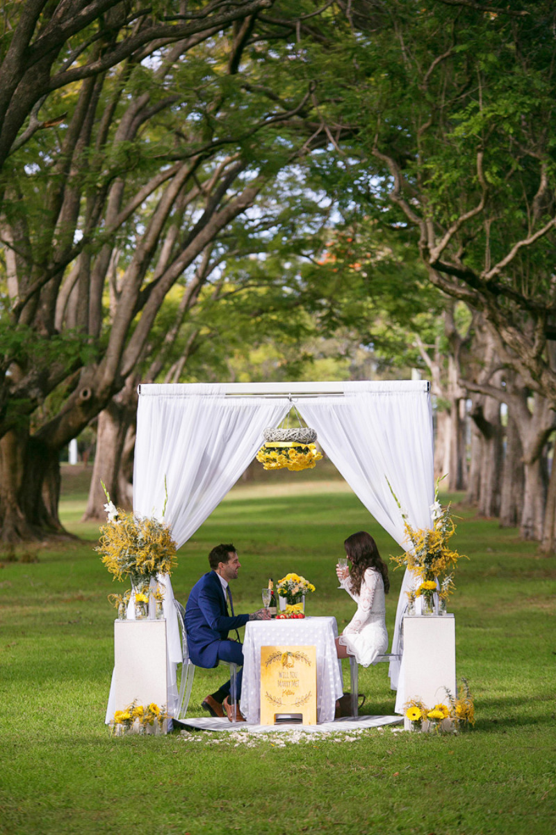 http://amazingproposals.com.au/ create and style amazing proposals in Brisbane and surrounding areas. Contact the Amazing Proposals