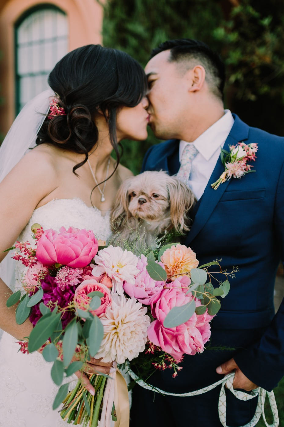 Don't forget your furry friends on your wedding day