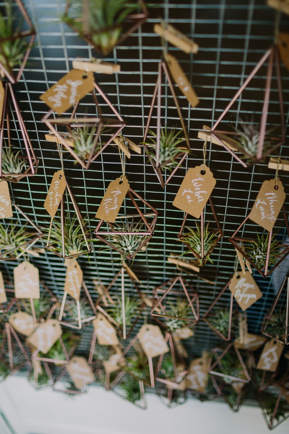 Seating chart with hanging airplants