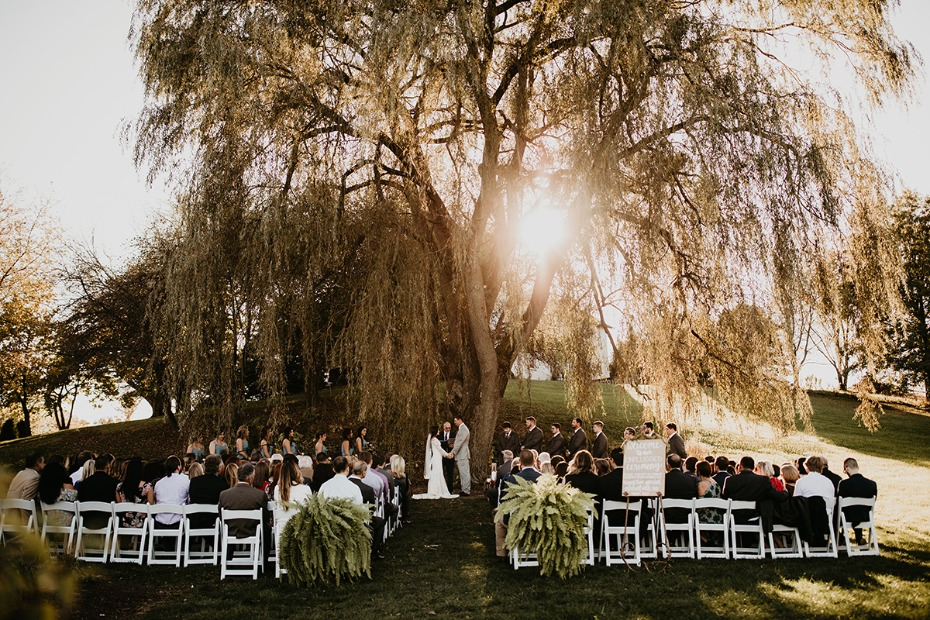 Outdoor ceremony under a tree